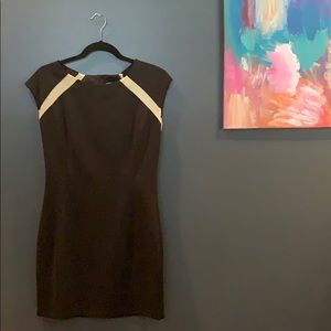 Black Capped Sleeve Dress with Beige Mesh; LARGE
